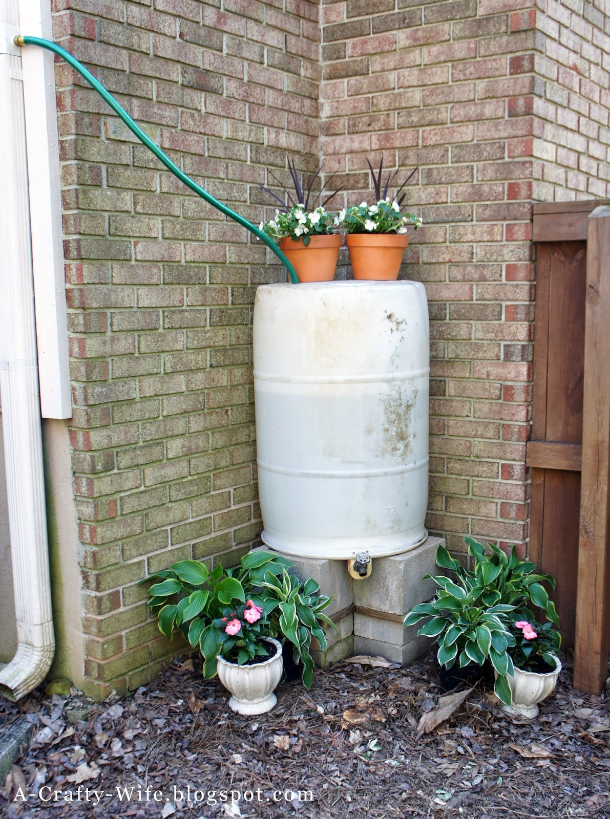 Make your own rain barrel - 2 hour or less project | A Crafty Wife