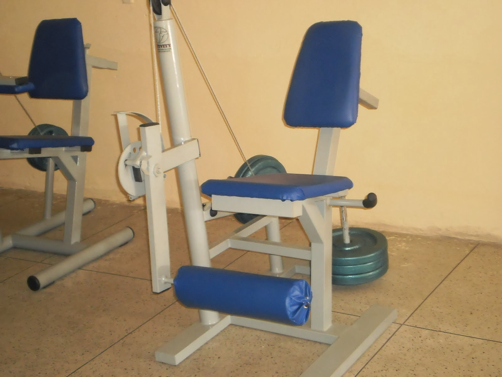 Cadeira Extensora Articulada