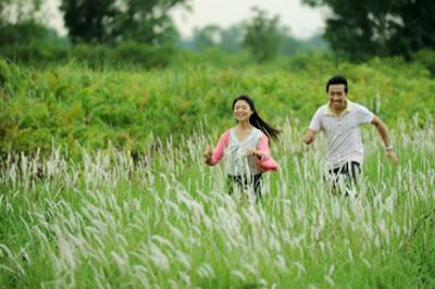 Phim Giấc Mơ Cỏ May - VTV3 2012 Online