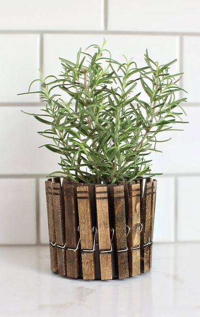 Clothespinplanters rosemary1.1331793426