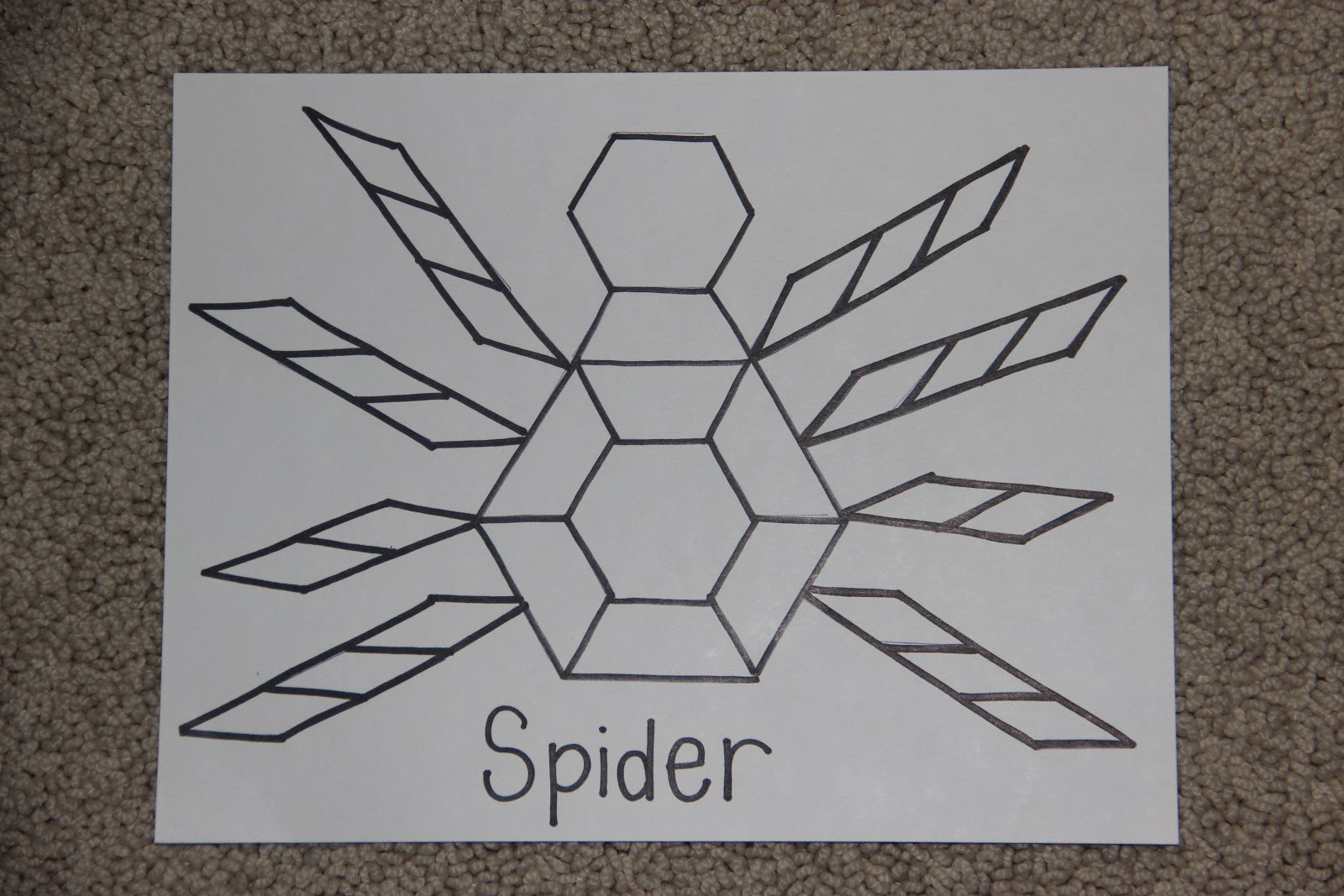 the johnson journey  unit theme  spiders