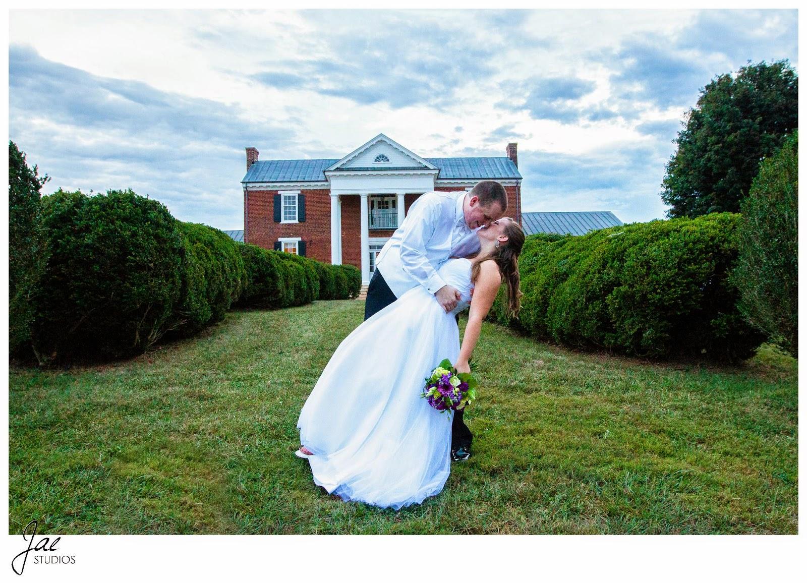 Jonathan and Julie, Bird cage, West Manor Estate, Wedding, Lynchburg, Virginia, Jae Studios, wedding dress, grass, tuxedo, flowers, purple, dipping