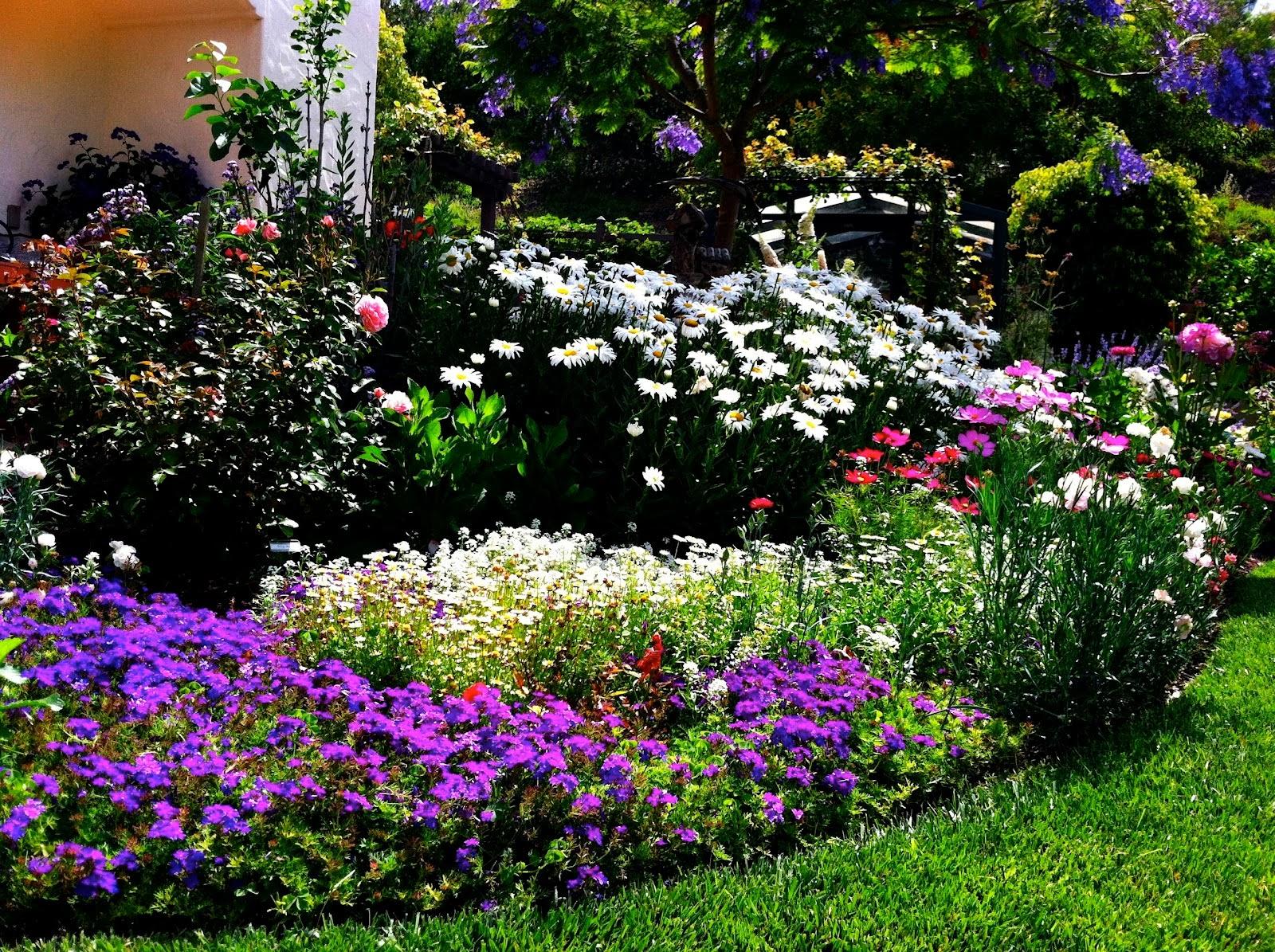 Arte y jardiner a empleo del color en dise o de jardines for Arboles preciosos para jardin
