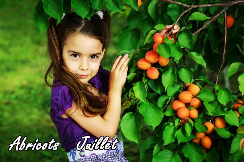 encyclopédie de la taille des arbres fruitiers - arc de vie