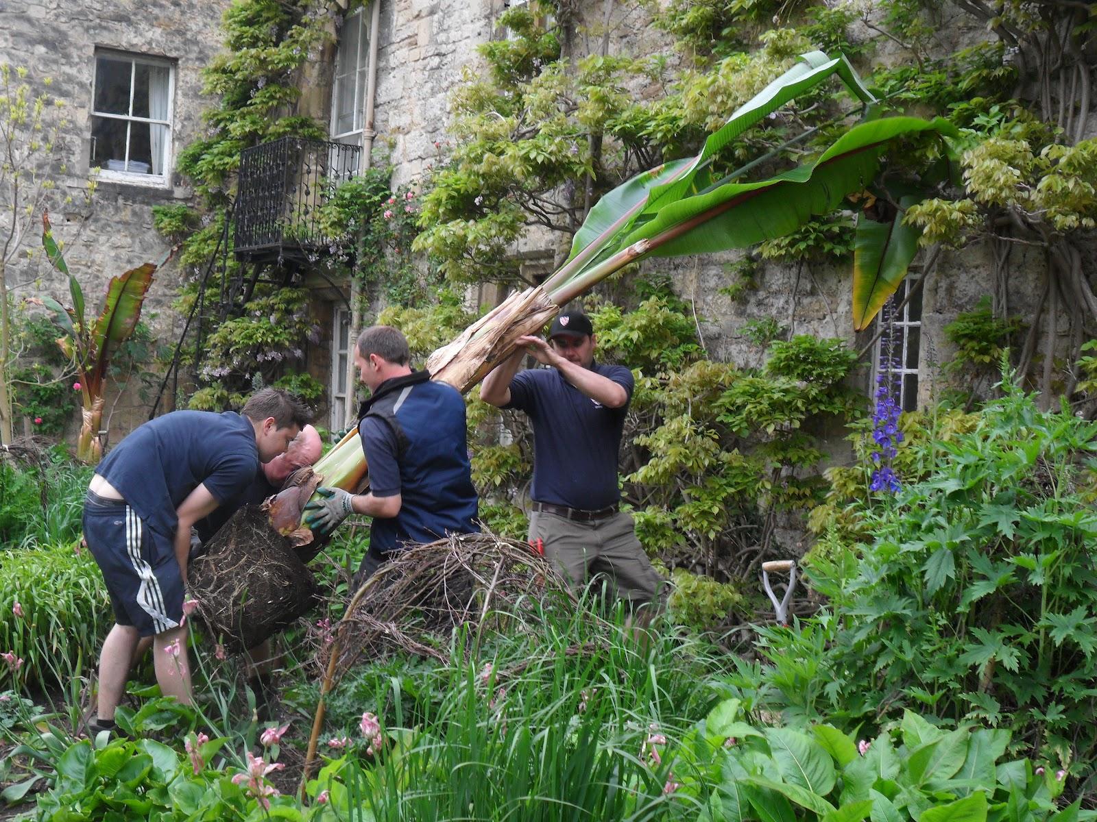 Worcester College Gardeners Five Strong Men