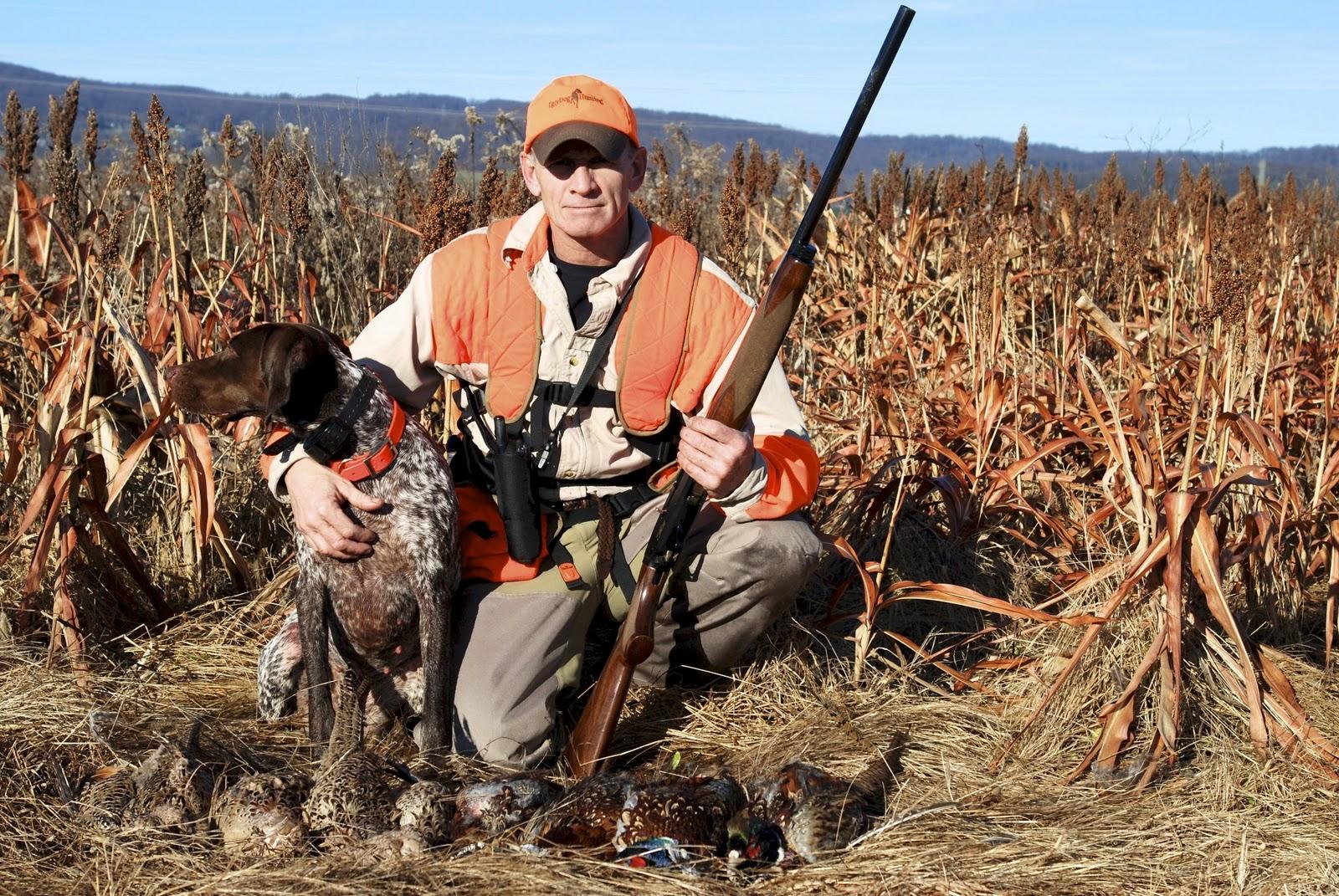Adventures of a GSP Hunting Dog: November 2011