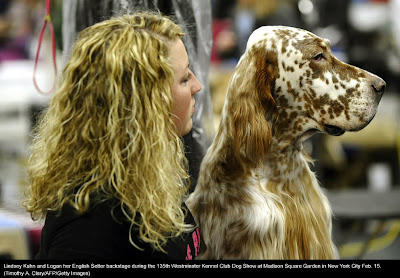 135th Westminster Kennel Club Dog Show at Madison Square Garden in New York City