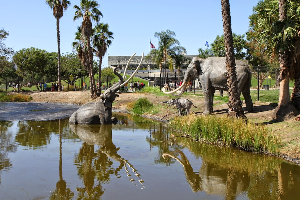 an overview of the geology of la brea tar pits La brea tar pits & page museum the large body of water at bottom is the lake pit (satellite photo provided by sanborn & google earth.