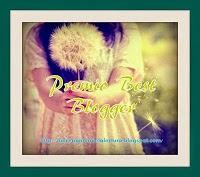 http://dulceagoniadelalectura.blogspot.com.es/search/label/Premios%20y%20nominaciones