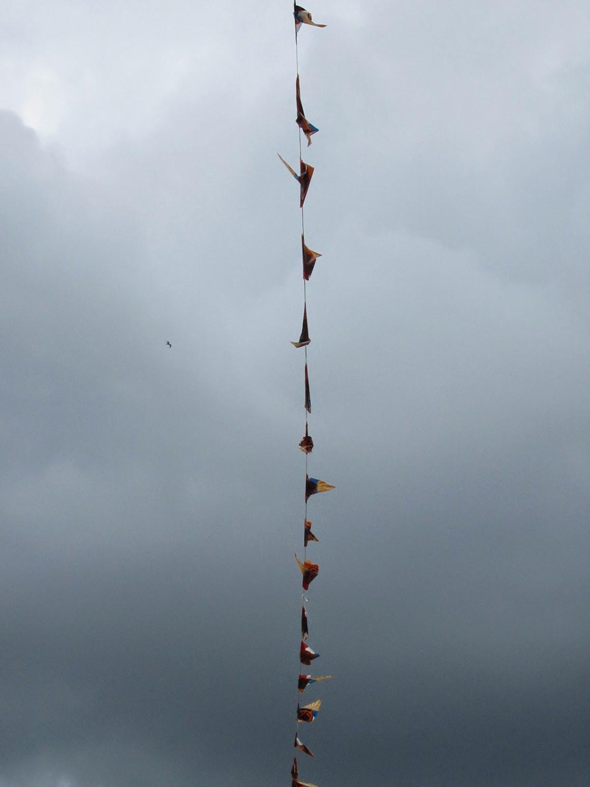 little flags against a dark sky