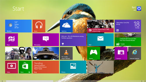 Kingfisher Birds Theme For Windows 8