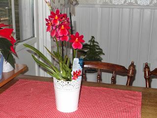 orkidé, julduk, ikea kruka