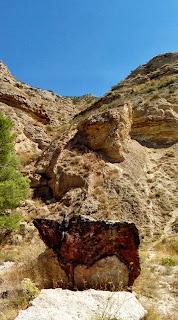Bisonte en Piedra Barranco de la Balsa María de Huerva