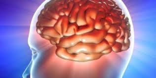 Hypertension affects brain capacity