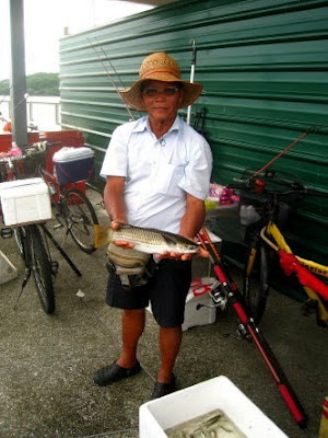 Mullet or Chow Orh [ 草乌 ] or Belanak Caught by Ah Ling weighing 1.5 kg plus at Woodland Jetty Fishing Hotspots was created to share with those who are interested in fishing on tips and type of fishes caught around Woodland Jetty Fishing Hotspots.