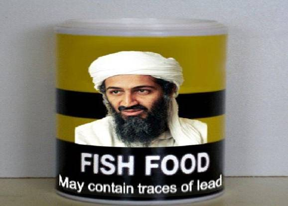 fish food fish food bin stupid