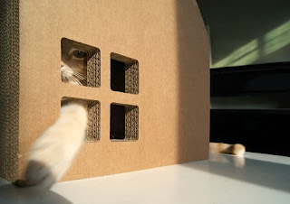 Casa de Carton para Gatos, Materiales Reciclados