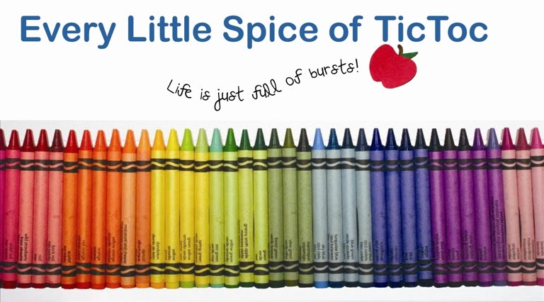 Every Little Spice of TicToc!