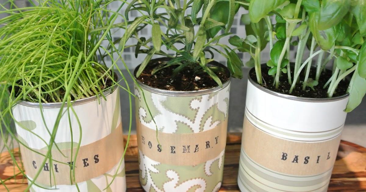 DIY || mother's day indoor herb garden