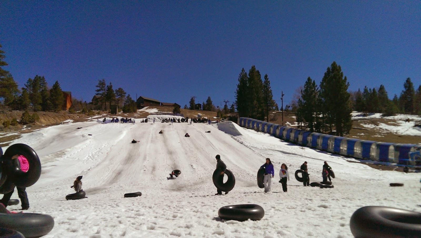 Alpine+Slide Alpine Slide Big Bear Review - Vacation Big Bear