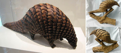 Presence of Pangolins Seen On www.coolpicturegallery.us
