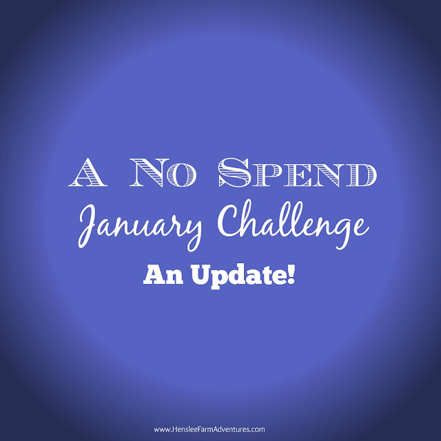 A No Spend Update and an Organization Project www.hensleefarmadventures.com