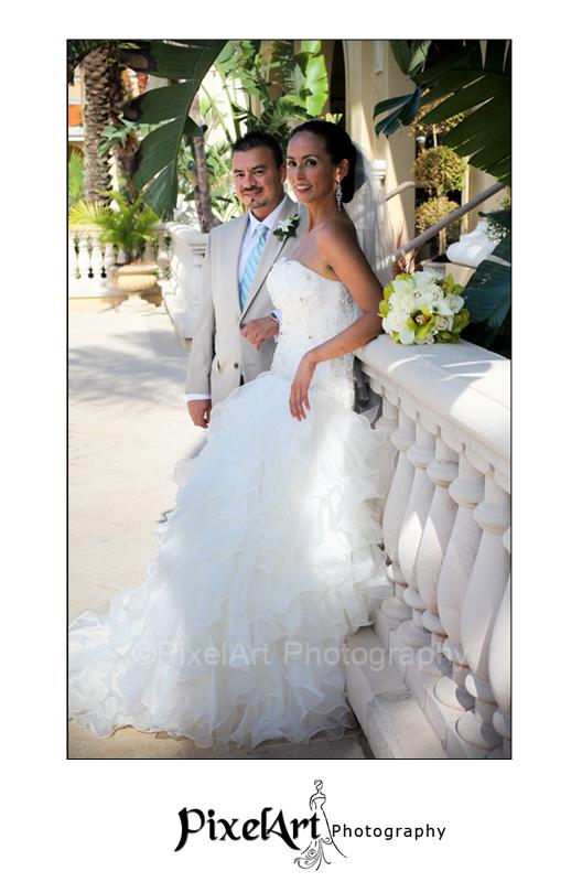 Wedding Portrait Sarasota