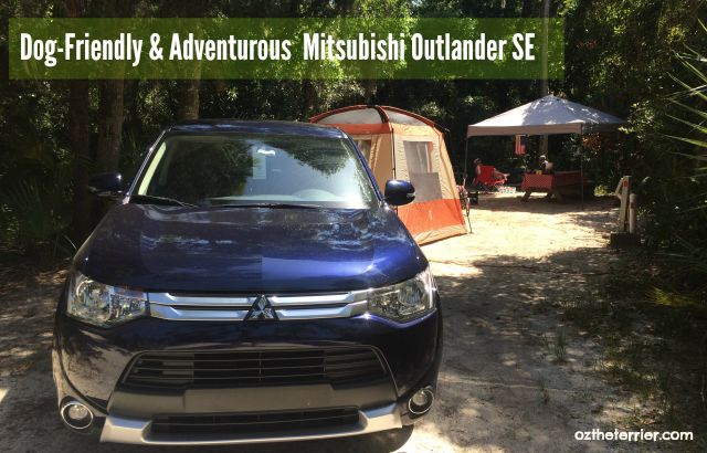 Oz the Terrier concludes Mitsubishi Outlander is well suited to small-to-large dogs and their families having terrierific road tripping adventures
