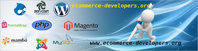 www.ecommerce-developers.org