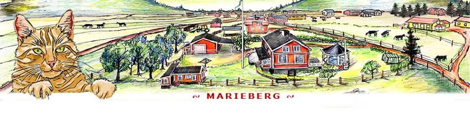 ~ Marieberg ~