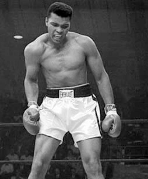 Ali boxer muhammad ali boxer muhammad ali boxer muhammad ali boxer