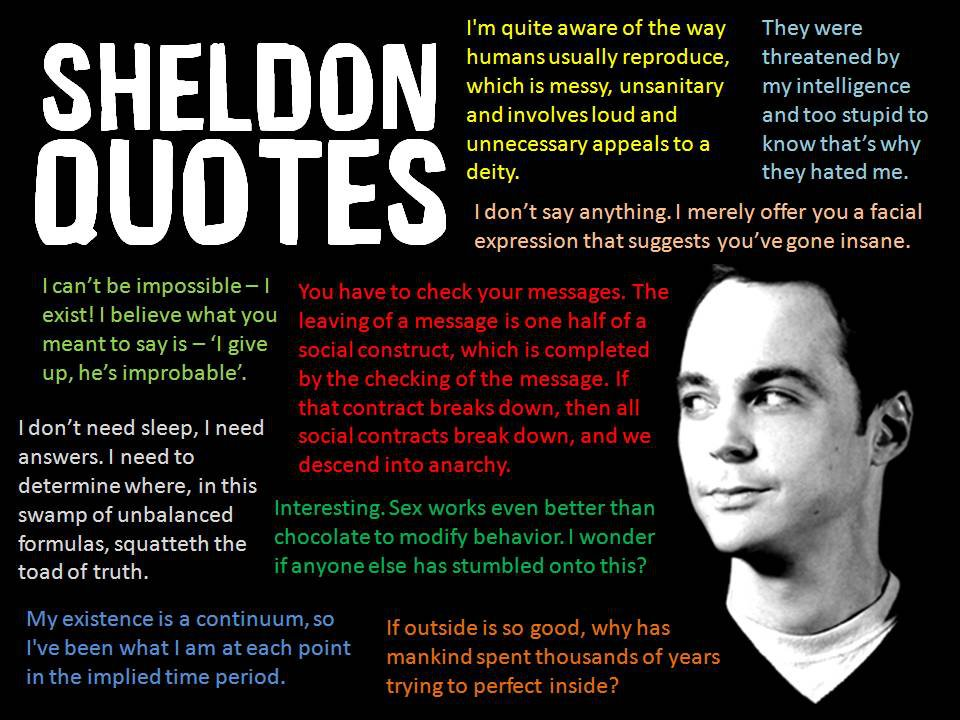 Sheldon Cooper Archives - Common Sense Evaluation