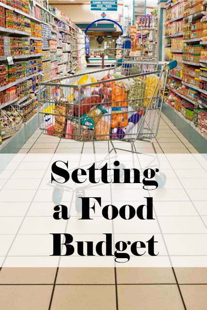 When trying to set a budget stretching your dollar with you food budget is very important.