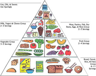 Health food pyramid diet