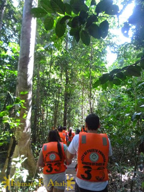 Forest trail to Puerto Princesa Underground River