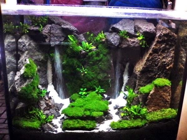 learn and make aquascape waterfall learning and creating