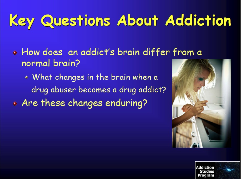 drug addiction disease or not
