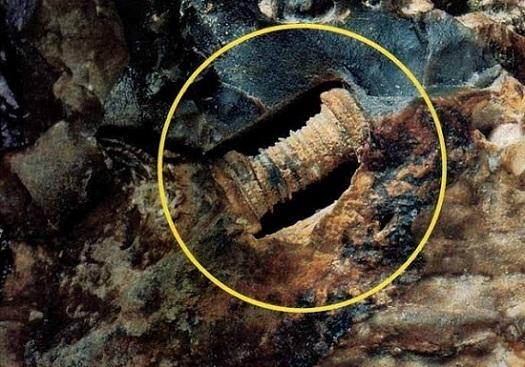 Tornillo en Rusia de 300 millones de años