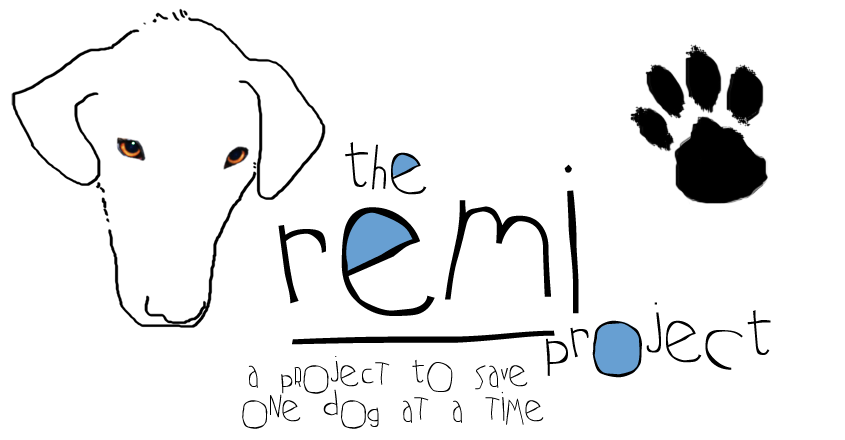 the REMI project