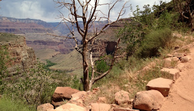 Bright Angel Trail i Grand Canyon National Park i Arizona.