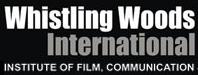 WWI Institute