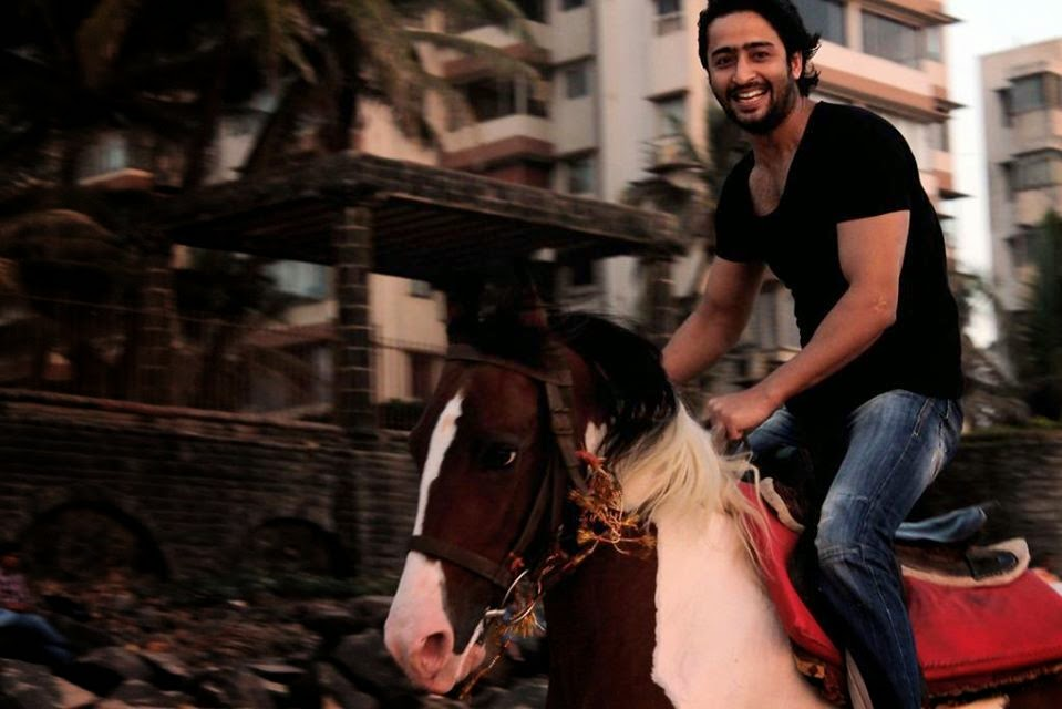 Shaheer Sheikh HD wallpapers Free Download