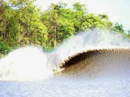 El Macareo del Amazonas