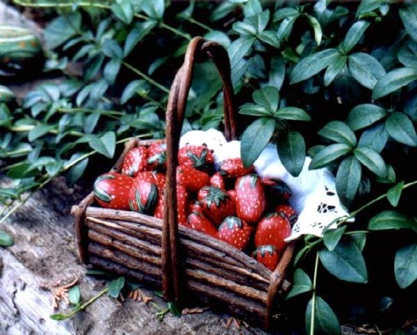 Pintar piedras guia de jardin - Fresas para piedra ...