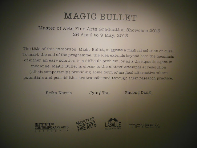 Lasalle Singapore, Fine Arts Graduation Showcase, exhibition, magic bullet, ica gallery