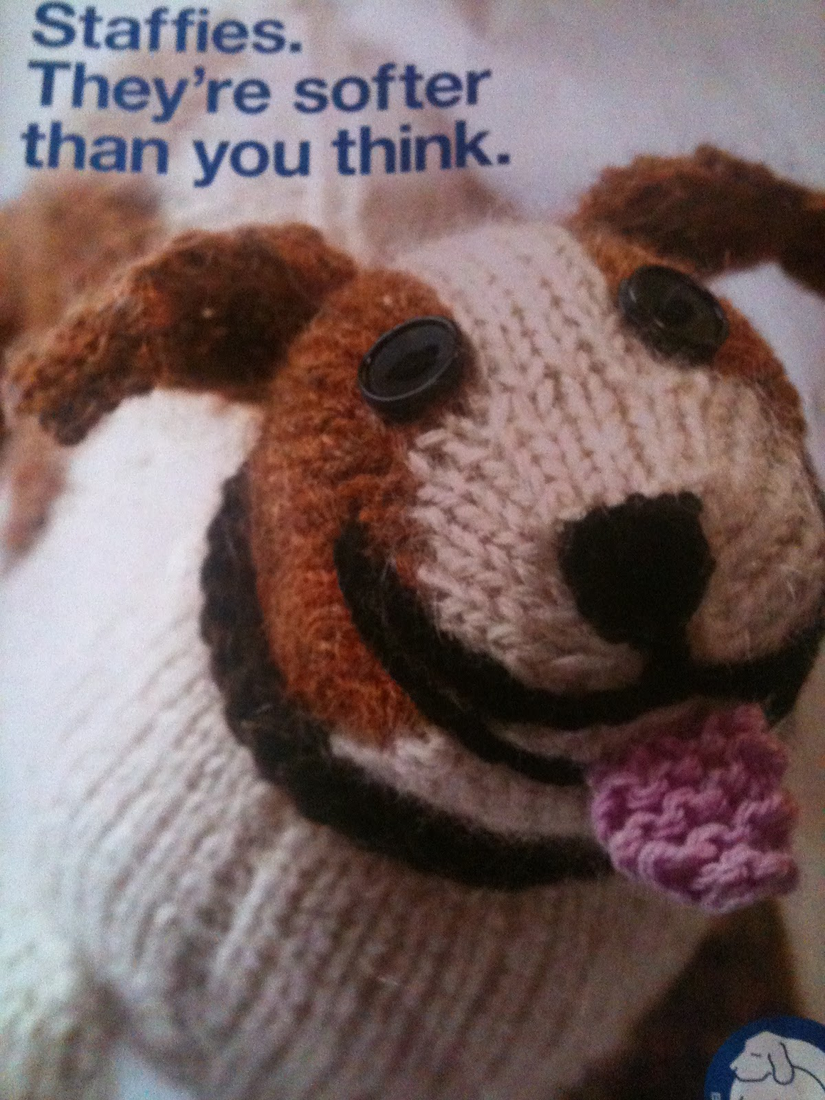 Rspca Knitting Patterns For Dogs : Cute Knitting: So much to say, sooooo little time.