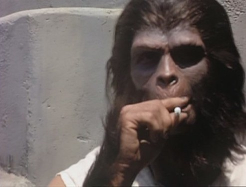Vintage Everyday Planet Of The Apes Behind The Scenes