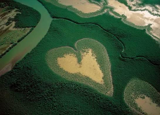 Corazón fotografía