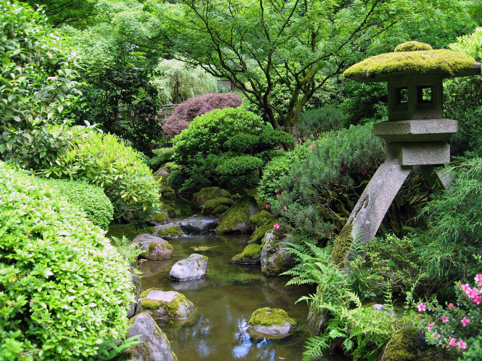 Let's Learn Japanese 日本語を勉強しましょう: Japanese Gardens ...
