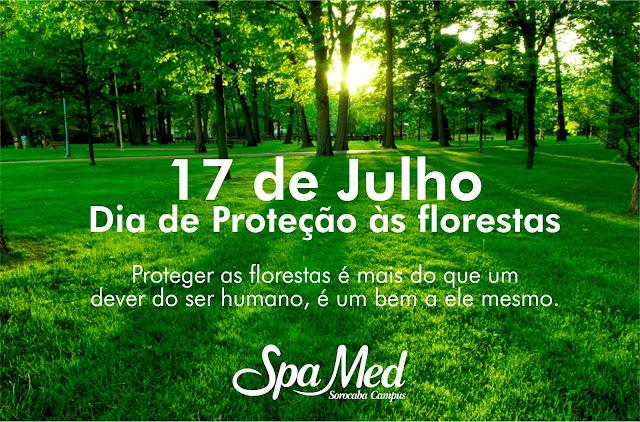 17 de julho Dia de Proteção as Florestas